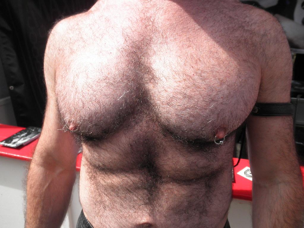101 HOT MAN CHESTS / PECS ! ! # 81 ! ( safe photo )