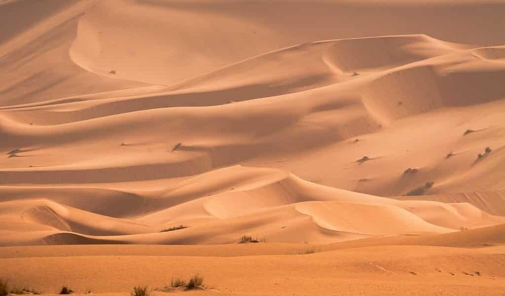 La sécheresse extrême affectera 700 millions de personnes