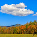 Peter Ciro Photography posted a photo:Fall Colors in Cades Cove - Great Smoky Mountains National Park