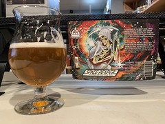 2021 20/365 1/20/2021 WEDNESDAY - Space Reaper Double India Pale Ale - DC Brau