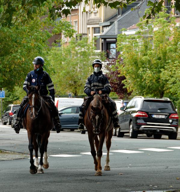 Ici la Police est calme et cool - Here the Police are calm and cool