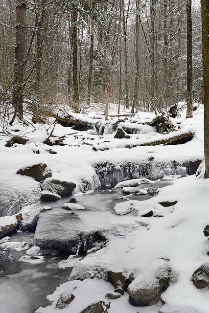 Camp Brook