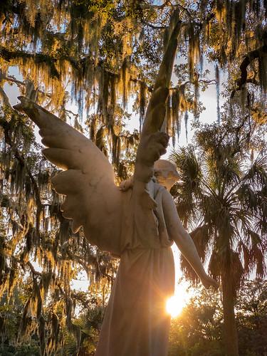 angelart angelphotography angels spanishmoss angelinsunlight guardianangel angelstatuephoto sunlitangel angeloflight angelofhope sculpture angelstatue fernandinabeach spiritual ameliaisland florida angelphoto sunlight inspirational angelwings inspirationalangel wingsofangels