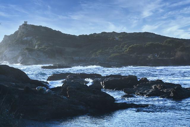 L'île du Gaou, France, Var  -1L8A4955
