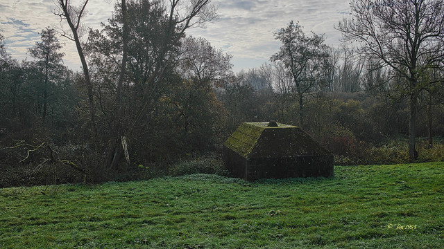 Heukelum -  Groepsschuilplaats Type P Nieuwe Zuiderlingedijk -   (1)