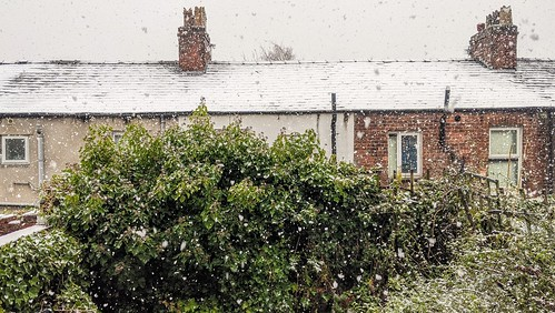 Snowing again | by Tony Worrall