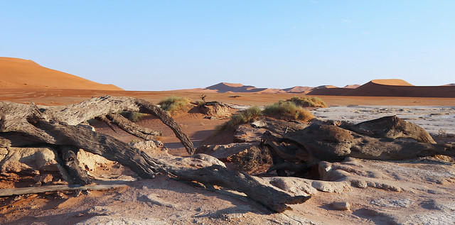 Deadvlei Sand dunes. Namibia