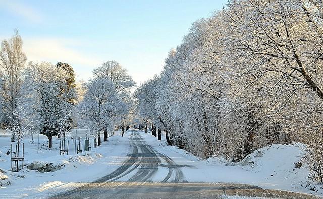 Vinter i Hälsingland 8.