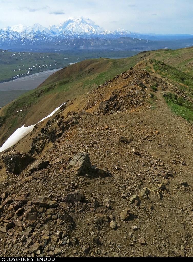 20180704_33 Denali seen from the Eielson Alpine Trail | Eielson Visitor Center in Denali National Park & Preserve, Alaska