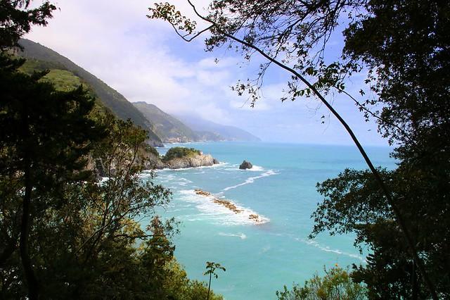 Travelling Memories : Through The Trees @ Monterosso al Mare