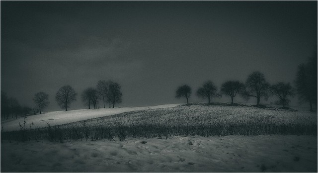 ...snow in the field...