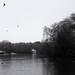 "<p><a href=""https://www.flickr.com/people/emmafarrer/"">Miss Emma Gibbs</a> posted a photo:</p>  <p><a href=""https://www.flickr.com/photos/emmafarrer/50866487237/"" title=""Heaton Park Snow""><img src=""https://live.staticflickr.com/65535/50866487237_719ea6cd83_m.jpg"" width=""240"" height=""159"" alt=""Heaton Park Snow"" /></a></p>"