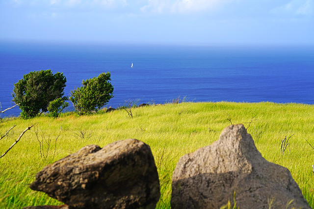 Picturesque rocks on the green lawn, Southeast Peninsula, St Kitts