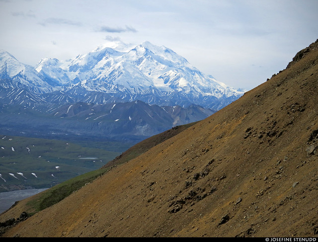 20180704_28 Denali seen from the Eielson Alpine Trail | Eielson Visitor Center in Denali National Park & Preserve, Alaska