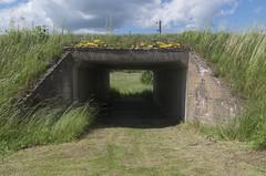 Tunelis, 22.06.2020.