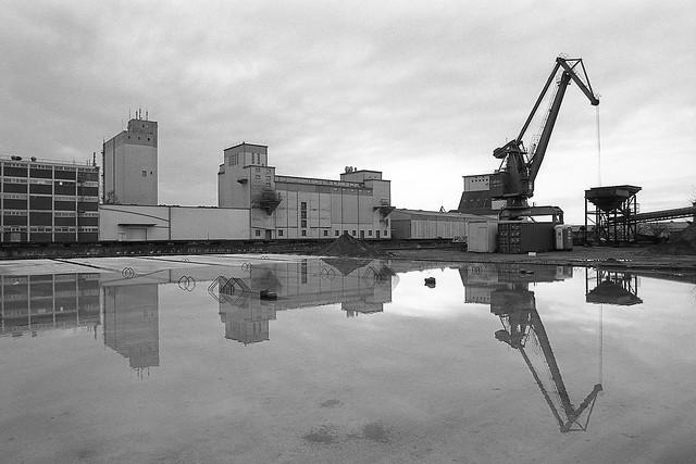 harbour scene I