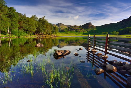 dontfencemein bleatarn fence reeds sunlight langdales tarn rocks stones lake cumbria district nationalpark nationaltrust fell fells cumbrian mountains unitedkingdom greatbritain landscape imagestwiston mountain still water reflections morning green summer sunrise dawn calm serene tranquillity stupidoclock sidepike great langdale little unesco worldheritagesite nisi nisifilters gnd neutraldensity grad