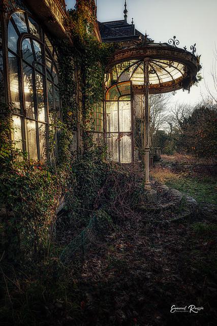 Dans mon jardin d'hiver...