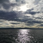 1. Veebruar 2020 - 11:43 - Lac de Neuchâtel, Switzerland