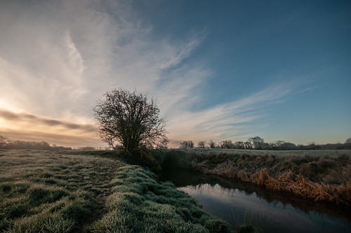 kenn clevedon somerset england uk landscape trees sunrise mist stream river rhyne frost frosty morning grass fields clouds nikond300 pastoral outdoors outside countryside explore