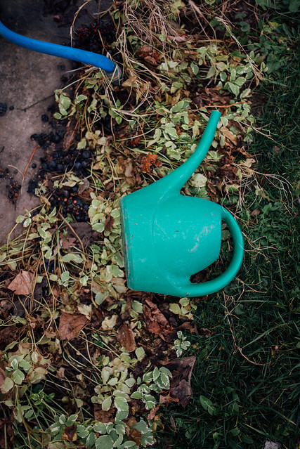 Green plastic watering can from above.