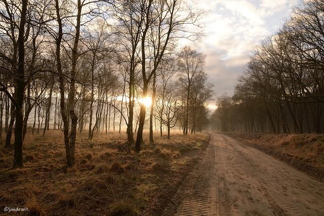 Sunrise Ginkelse Heide.