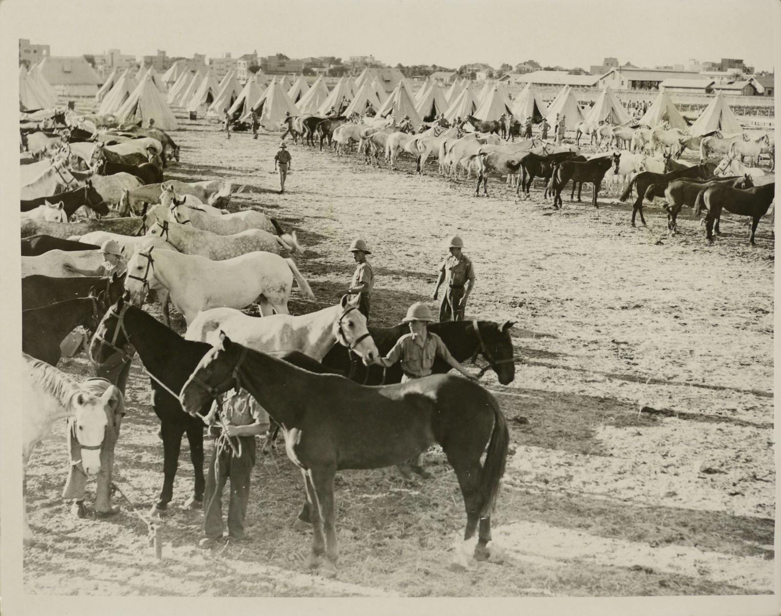 03. 1938. Первые фотографии шотландских драгун в Палестине.