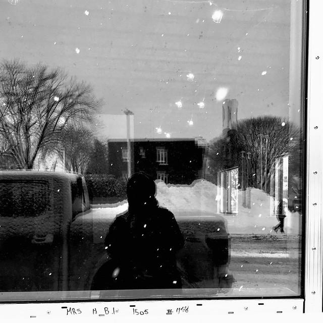 La neige et le froid perturbent notre vision de la réalité...