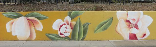 50867869267 b1aacb13b4 z Magnolias (5)