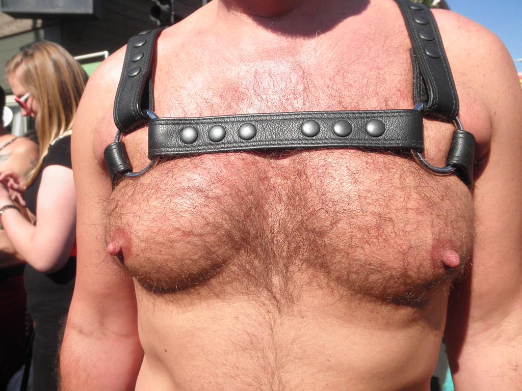 101 HOT MAN CHESTS / PECS ! ! # 77 ! ( safe photo )