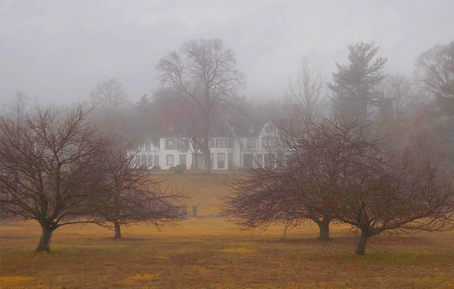 Misty Mansion