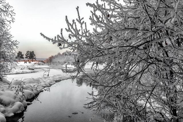 Ручей при впадении в реку