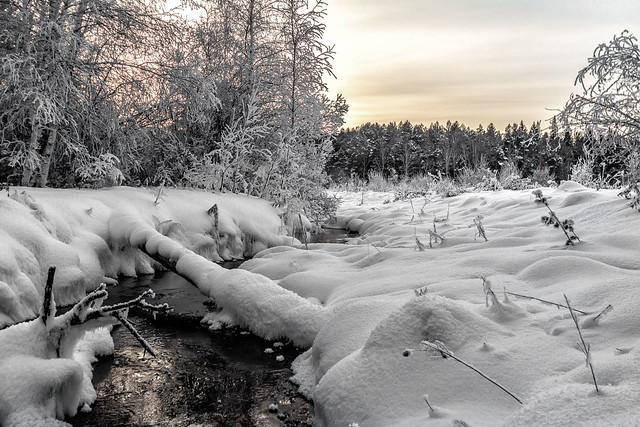 теплый ручей зимой