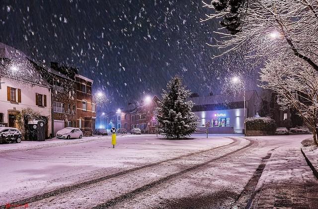 Snow - 9339