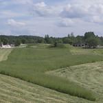 Ruins of the farm, 23.06.2020.