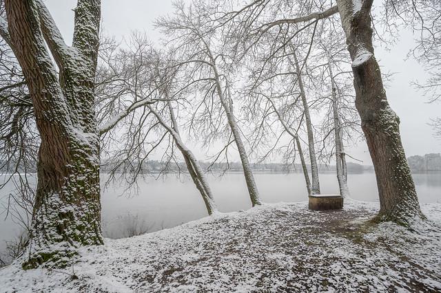 Winter - Dechsendorfer Weiher - 9488
