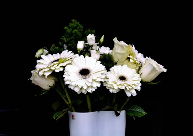 Vaso con fiori bianchi