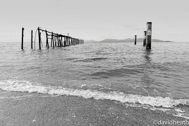 Grazing Pier