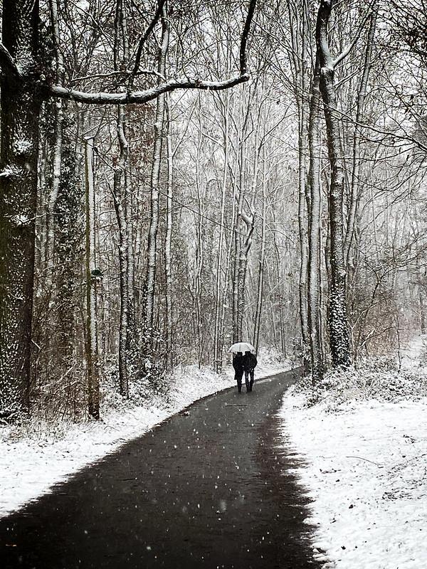 Winter in Stein