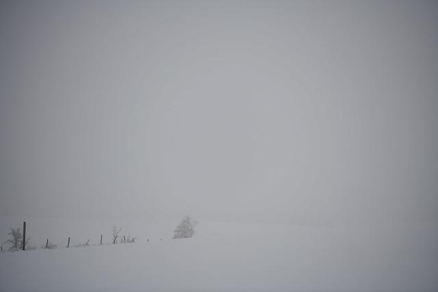 Snow (explored)