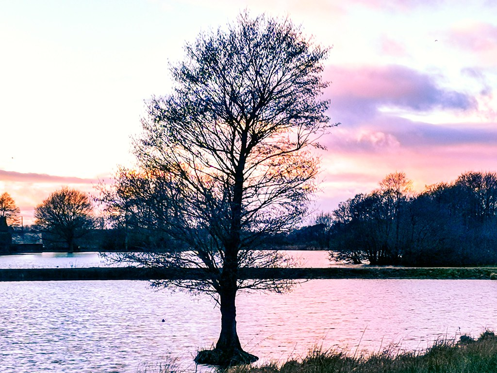 Cannock, England
