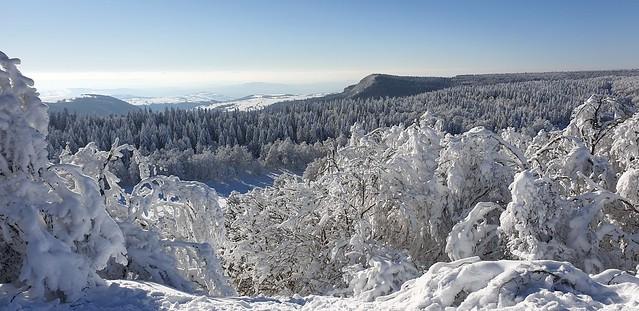 Aubrac in the snow, Aveyron, France. L'Aubrac sous la neige, Aveyron, France.