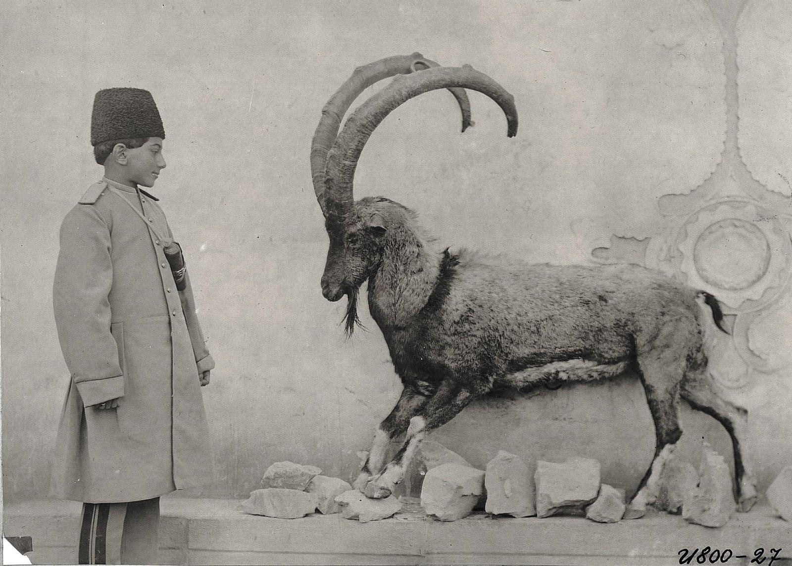 Охотник Зелле-Султан (слева) и горный козел