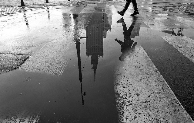 I will never grow tired of this puddle.