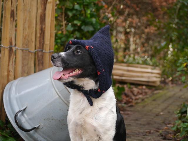 Beike's winter cap