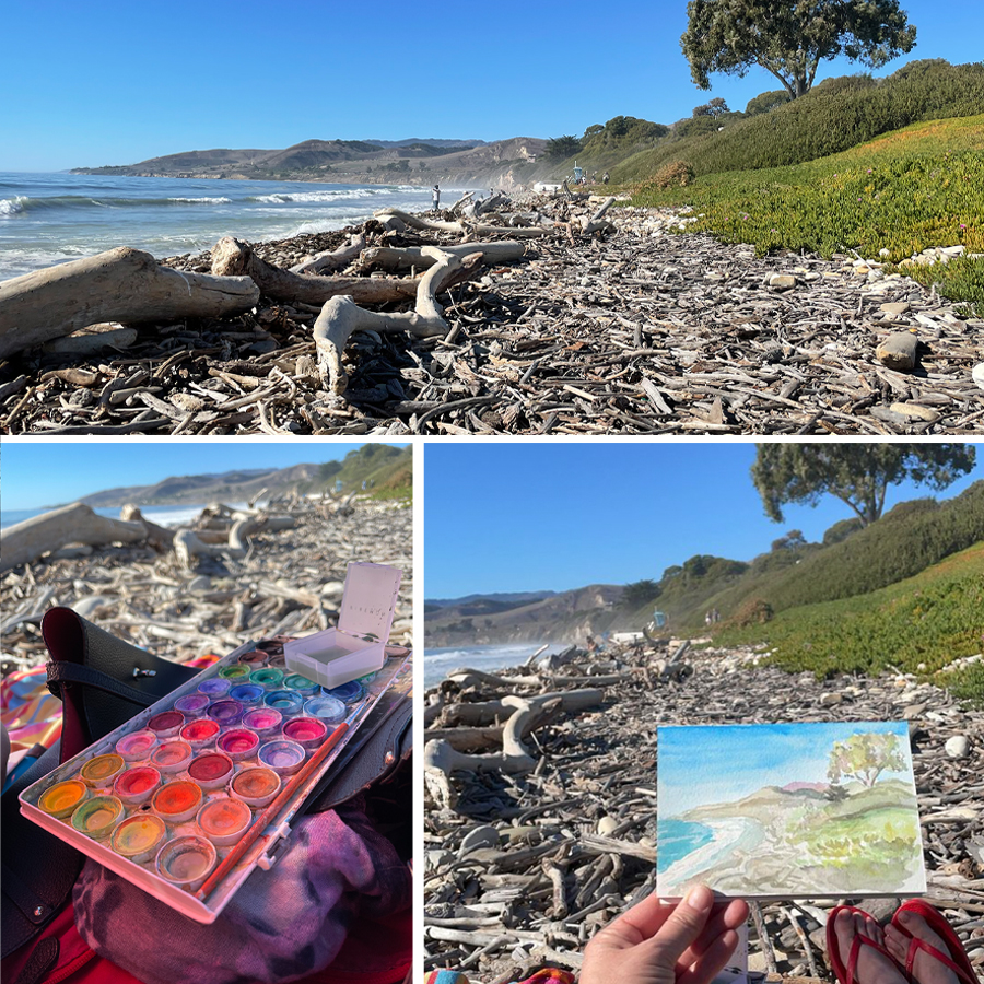 painting-beach-of-sticks-and-rocks-el-capitan-state-beach