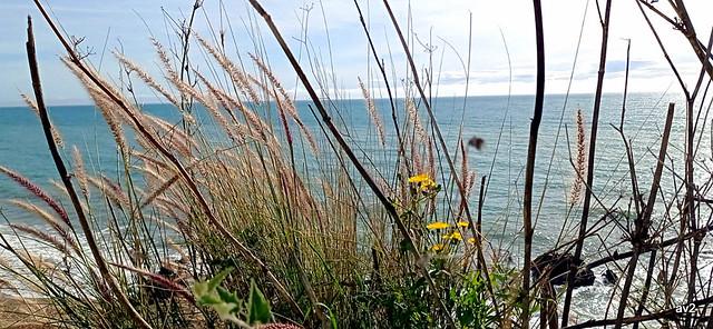 Por fin un día en el mar y un cielo azul.