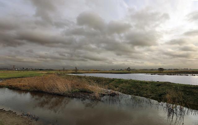 Nature reserve - 'Rupelmonde polder' - Belgium