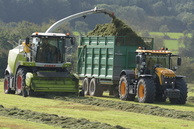 Claas Jaguar 880 SPFH filling a Broughan Engineering Mega HiSpeed Trailer drawn by a JCB Fastrac 4220 Tractor