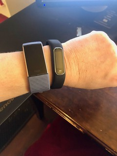 Testing Fitbit vs Garmin fitness trackers